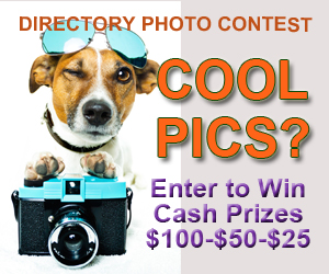 Enter to Win Cash Prizes  